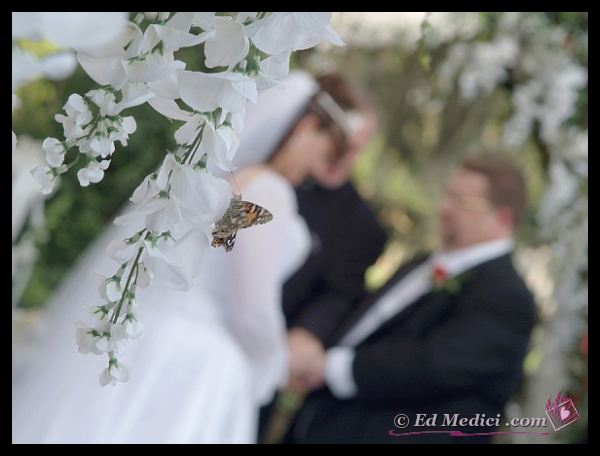 Wedding Photography by The Medici Gallery With A Touch of Romance